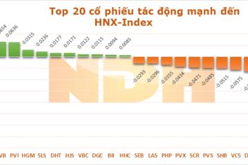 10 cổ phiếu ảnh hưởng đến thị trường phiên 20/7: 'Cứu tinh' VNM