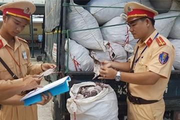 Đà Nẵng: Phát hiện 2 tấn mực khô bốc mùi hôi, nấm mốc