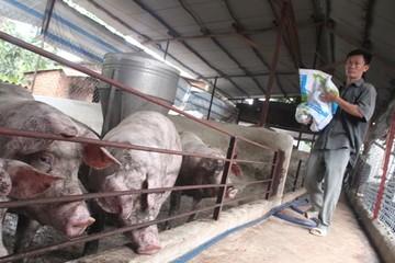 Người Việt thèm thịt: Làm sao để cung bắt kịp cầu?