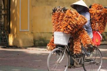 Financial Times: Việt Nam thống lĩnh về hút FDI trong nhóm 14 thị trường mới nổi