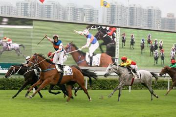 Cuộc chơi trăm triệu USD quanh các trường đua ngựa