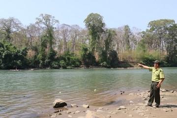 Hủy việc lấy đất rừng làm dự án thủy điện Đrăng Phôk