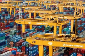 Choáng với sự kiện Lehman Brothers ngành vận tải biển