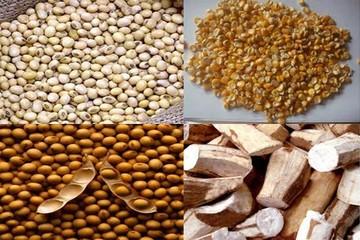 8 tháng, nhập khẩu gần 2 tỷ USD thức ăn chăn