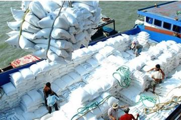 Gạo Việt Nam sụt giá, khách mua quốc tế vẫn không mặn mà