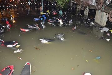 Hơn 1.000 xe máy chìm nghỉm trong bãi ở Sài Gòn