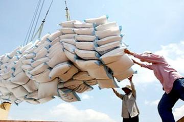 Thủ tướng yêu cầu đẩy mạnh thu mua, tiêu thụ lúa gạo