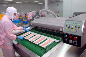 Lỗ lớn nửa đầu năm, Trang Corp kế hoạch lãi cả năm 2016