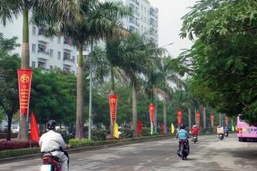TP HCM có tên đường Nguyễn Cơ Thạch