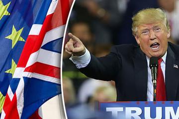 Brexit và Donald Trump là nguồn sống của thị trường mới nổi