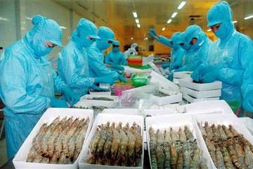 Hàn Quốc kiểm tra toàn bộ sản phẩm tôm đông lạnh Việt Nam