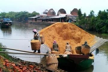 Trấu - rơm Việt Nam đổi đời, trở thành hàng hiếm