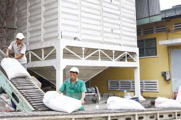 Lối nào nâng tầm xuất khẩu gạo?
