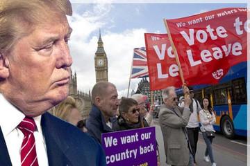Những sự trùng lặp giữa Brexit và bầu cử Mỹ năm 2016