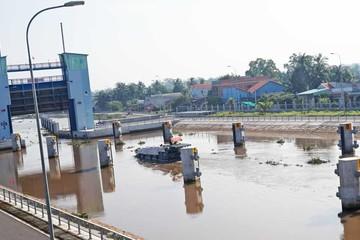 Âu tàu lớn nhất khu vực Đông Nam Á tại tỉnh Long An đi vào hoạt động