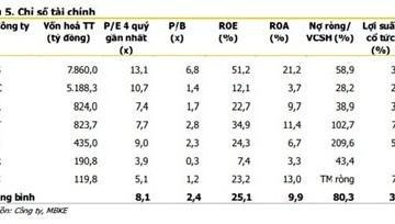 Cổ phiếu gạch ốp lát: P/E thấp nhưng không phải cổ phiếu nào cũng hấp dẫn