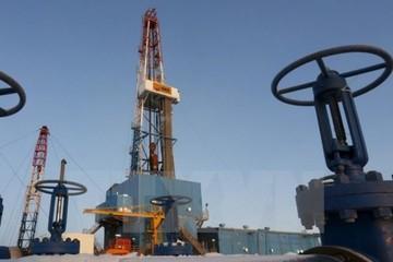 Mỹ cấm các hoạt động khai thác dầu khí mới tại vùng biển Bắc Cực