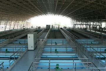 50 triệu cổ phiếu CTCP Nước sạch Vinaconex giao dịch trên UPCoM