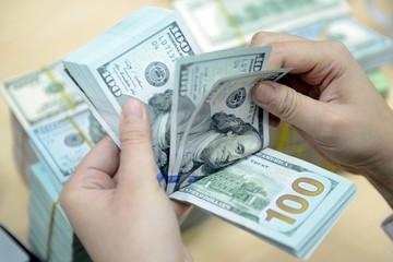 Tỷ giá trung tâm vọt lên 22.144 đồng/USD, tăng 1,16% so với đầu năm