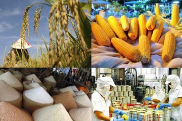 Mỹ kiện Trung Quốc lên WTO về chính sách hạn ngạch thuế quan đối với các sản phẩm nông nghiệp