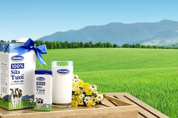 F&N Dairy Investment đăng ký mua 21 triệu cổ phiếu VNM, nâng sở hữu lên trên 15%