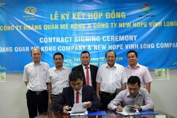 HQC: New Hope thuê hơn 3 ha đất xây nhà máy tại KCN Bình Minh Vĩnh Long