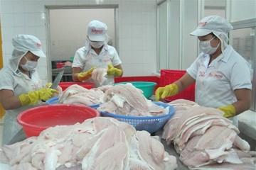 Siết sử dụng kháng sinh trong chăn nuôi
