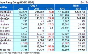 RDP: Không còn lợi nhuận từ thanh lý tài sản, lãi ròng quý 4 giảm 74% cùng kỳ