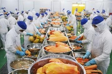 Chuỗi sản xuất nông nghiệp hút vốn ngoại