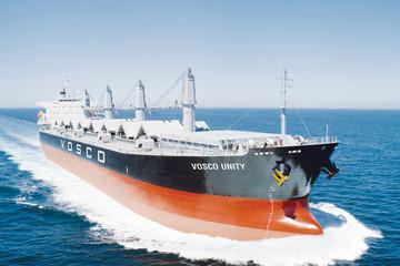 Ngành vận tải biển triền miên thua lỗ, giá cổ phiếu chìm sâu