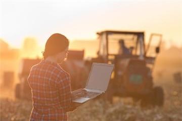 Nông dân Mỹ chuộng mua bán trên mạng