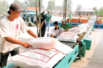Bộ trưởng Công Thương chỉ đạo làm rõ việc tốn 20.000 USD làm giấy phép xuất khẩu gạo