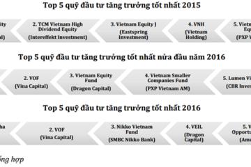 Chân dung Quỹ đầu tư lạ có kết quả hoạt động ấn tượng nhất TTCK Việt Nam năm qua