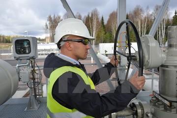 Ba Lan, Ukraine tố Nga dùng đường ống khí đốt để