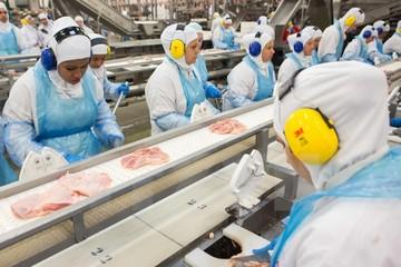 Ai Cập nối lại việc nhập khẩu thịt Brazil sau bê bối thịt bẩn
