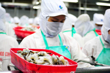 Việt Nam thu về 8,7 tỷ USD từ xuất khẩu sang thị trường Mỹ trong ba tháng đầu năm