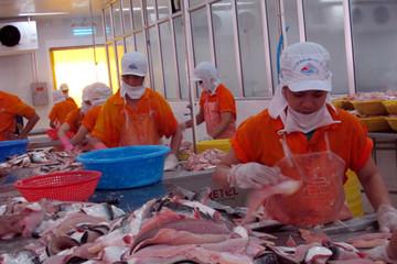 Mỹ công bố mức thuế chống bán phá giá đối với cá tra, cá basa của Việt Nam
