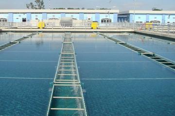 TP HCM nghiên cứu xử lý bùn thải cho nhà máy nước Thủ Đức và Bình An