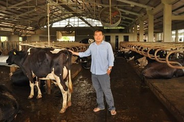 """Tỷ phú bò sữa và giấc mơ thoát khỏi """"ao làng"""""""