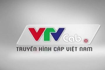 Bị xâm hại bản quyền, VTVcab phải dừng phát sóng giải C1 và C3