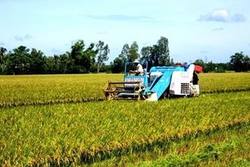 Lộc Trời liên doanh với đối tác Trung Quốc phát triển chuỗi nông sản
