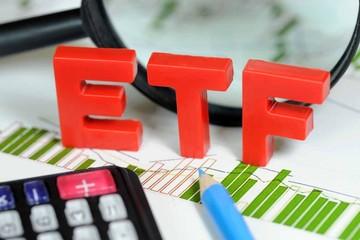 V.N.M ETF có thể tiếp tục phá lệ trong kỳ cơ cấu lần này?