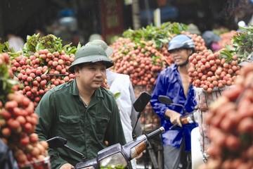 Phía sau hào quang xuất khẩu rau quả