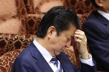 Tín nhiệm tụt dốc vì bê bối trường học, thủ tướng Nhật định cải tổ chính phủ