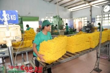 Xuất khẩu cao su Việt Nam tăng vọt