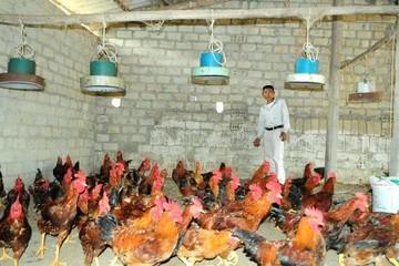 DBC chuyển nhượng 50% vốn của Chế biến thực phẩm Dabaco sang cho KDC