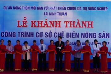 Khánh thành nhà máy ớt bột tổng vốn 650.000 USD tại Ninh Thuận