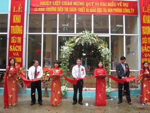 DST muốn đổi tên thành Đầu tư Sao Thăng Long và lập công ty con với tên cũ