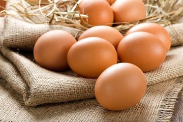 Người chăn nuôi đang lỗ 300-500 đồng mỗi quả trứng