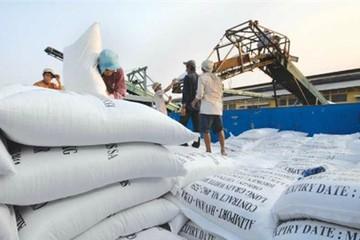 Việt Nam xuất khẩu 4 triệu tấn gạo vào năm 2030